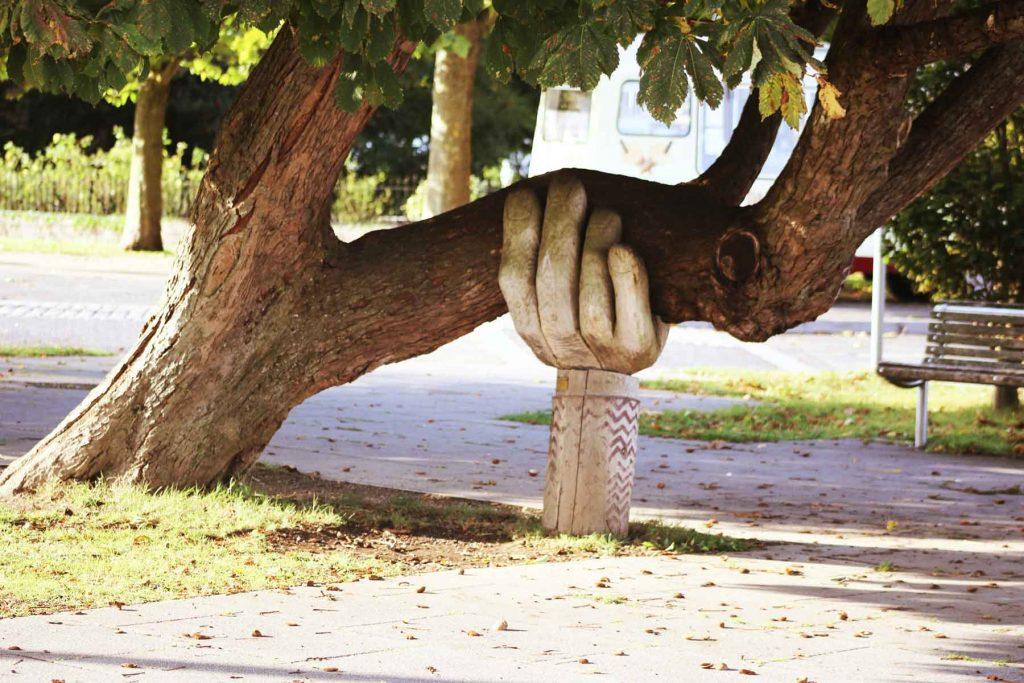 dinamismo energía eléctrica ejemplo árbol